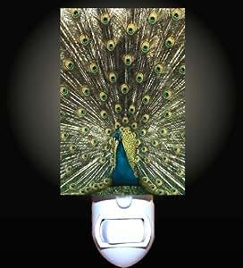 Royal Peacock Decorative Night Light