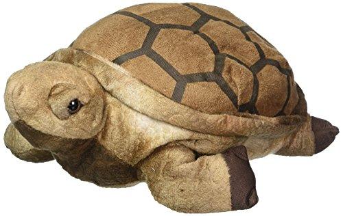 Tortoise Plush <br>Wishpets