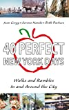 img - for 40 Perfect New York Days:Walks and Rambles In and Around the City book / textbook / text book
