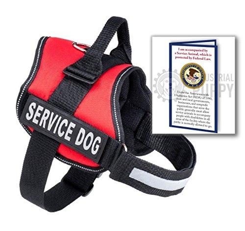Itblxwxql on Industrial Service Dog Puppy Vest