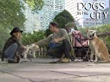 Dogs In The City: Don't Give Me The Drool