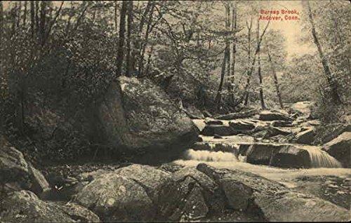 Burnap Brook in Andover, Connecticut