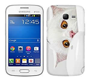 WOW Printed Designer Mobile Case Back Cover For Samsung Galaxy Star Pro S7262