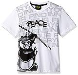 Kung Fu Panda Boys' T-Shirt (KFPTEE007_White_3 - 4 Years)
