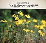 花と昆虫・マクロの世界―虫たちは私に、シャッターチャンスを教えてくれた (Bee books)