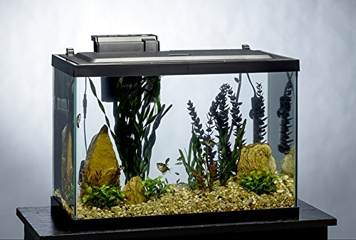 20 gallon aquarium kit led scratch resistant glass fish for 20 gallon fish tank kit