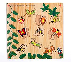 Skillofun Kingsize Identification Tray Insects with Knobs, Multi Color