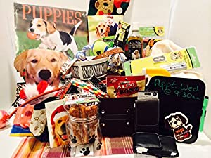 Puppy 40 Piece Starter Kit / Dog Holiday