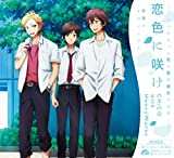 ���F�ɍ炯��CHiCO with HoneyWorks