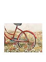 Contemporary Style Lienzo Bike