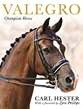 img - for Valegro: Champion Horse book / textbook / text book