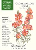 Scarlet Globemallow Botanic Gardens Series Seeds 50 Seeds