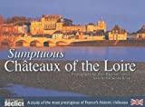 img - for sumptuous ch teaux of the Loire book / textbook / text book