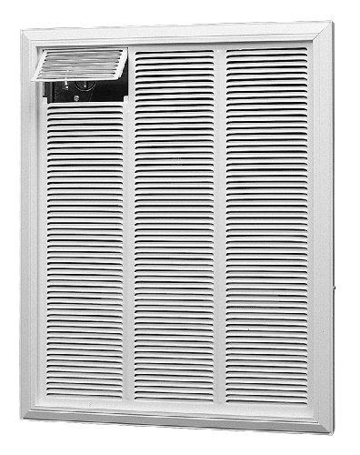 Dimplex Rfi840D21 4000-Watt 208-Volt 13648-Btu Commercial Fan-Forced Wall Heater