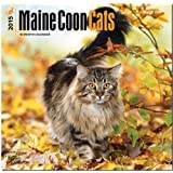 Maine Coon Cats 2015 Square 12x12 (Multilingual Edition)