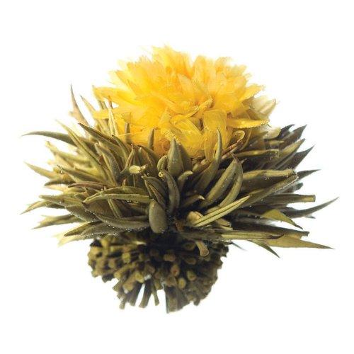 Tea Tree Oil Gel