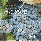 Vinifera: The World's Great Wine Grapes and Their Stories, 2012 Calendar ~ Ghigo Press