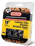 Oregon 18-Inch Pro-Guard Chain Saw Chain Fits Craftsman, Echo, Homelite, McCulloch, Poulan H72