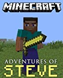 Minecraft: The Adventures of Steve: #1 Origins (A Minecraft Novel)