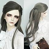 9-10 Inch 1/3 BJD SD Heat Resistant Synthetic Fiber Boy Man Style Long Loose Wavy Dark Silver Gray Soft Hair Wig BJD Doll Wigs for 1/3 1/4 1/6 BJD SD Doll (171) (Color: 171)