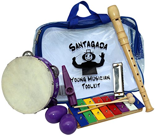 Young-Musician-Toolkit-Xylophone-Recorder-Tambourine-Harmonica-Kazoo-Two-Egg-Shakers-Quality-Musical-Instruments-for-Kids-Convenient-Carrying-Case