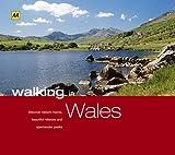 Wales (AA Walking in Series)