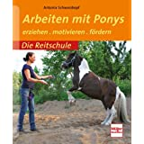 Arbeiten mit Ponys - erziehen . motivieren . fördern