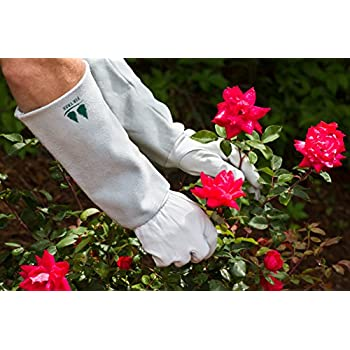 Leather Gardening Gloves by Fir Tree. Premium Goatskin Gloves With Cowhide Suede Gauntlet Sleeves. Perfect Rose Garden Gloves. Mens and Womens Sizes. M-8 (See Size Chart Photo)