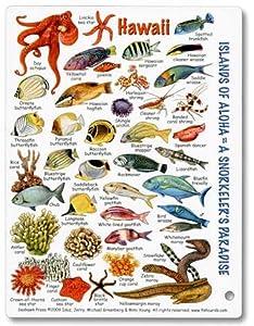 Mini hawaii fish and invertebrate id card for Hawaiian fish identification