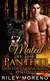 ROMANCE: Mated by the Panther (BWWM ALPHA ALE BILLIONAIRE) (INTERRACIAL MENAGE HIGHLANDER)