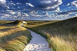 Beach Photography, Martha\'s Vineyard Photo, Cape Cod Artwork, Coastal Decor, Nautical Wall Art, Large Art Print, Blue, Green, White, Beige - \