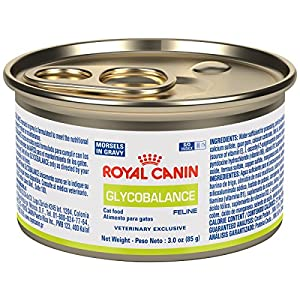 ROYAL CANIN Feline Glycobalance Morsels In Gravy Can  Cat Food