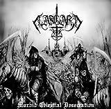 Morbid Celestial Desecration