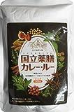 国立薬膳カレー ルー300g ×10個