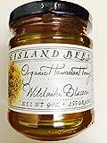 Hawaiian Macadamia Nut Blossom Raw Honey by Big Island Bees (9 ounce)