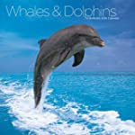 Whales & Dolphins  2016 Wall Calendar