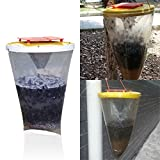 Environmental Flies Be Gone Non Toxic Fly Trap Flies Away Home outdoor