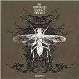 echange, troc Kilimanjaro Darkjazz Ensemble - Mutations Ep