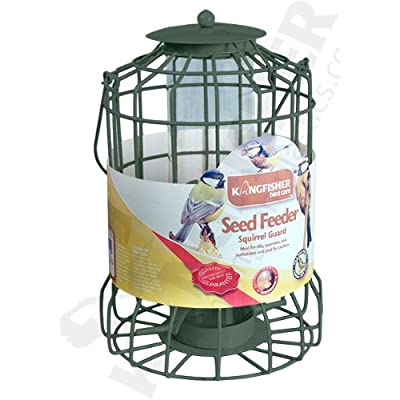Kingfisher BF008S Squirrel Guard Seed Feeder - Green