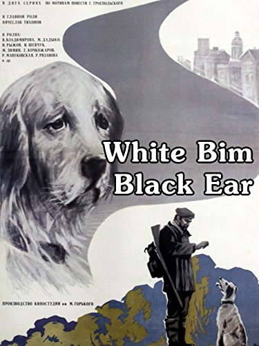 White Bim Black Ear