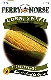 Ferry-Morse Seeds 1953 Corn - Kandy Korn 15 Gram Packet
