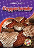 Copperheads (Blastoff! Readers: Snakes Alive) (Blastoff! Readers: Snakes Alive: Level 3)