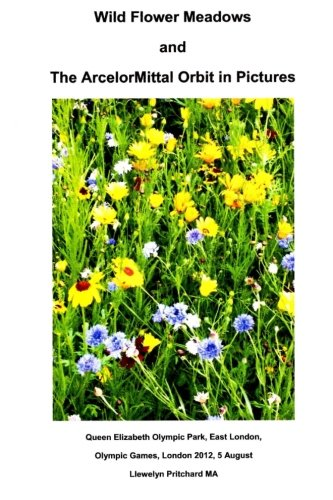 wild-flower-meadows-and-the-arcelormittal-orbit-in-pictures-photo-albums-volume-18-japanese-edition
