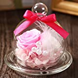 TEATSIGHT(ティートサイト) プリザーブドフラワー ギフト 枯れないお花 「ガラスポット入り バラ 2輪」 白×ピンク