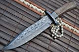 Outstanding Value - Custom Damascus Hunting Knife - Beautiful Bowie Knife -