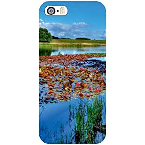 Apple iPhone 5S Back Cover - Nature Love Designer Cases
