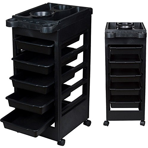 Beauty Salon Spa Styling Station Trolley Equipment Rolling Storage Tray Cart (Package Cart compare prices)
