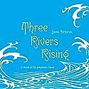 Three Rivers Rising: A Novel of the Johnstown Flood Audiobook by Jame Richards Narrated by Eileen Stevens, Joshua Swanson, Elisabeth Rodgers, Joe Barrett, Suzy Jackson, Jame Richards, Kevin Pariseau