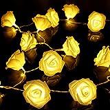 KingSo® 20 LED Battery Operated Rose Flower String Lights Wedding Garden Christmas Decor (Warm White)