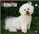 BrownTrout Bichon Frise, for the Love of 2014 DLX